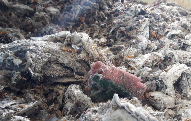 Blick aufs Rechengut - viele Dinge landen im Klo, die da nicht hingehören.