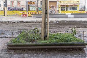 Baustelle Bornaische Straße: Ein Baum mitten auf der Baustelle