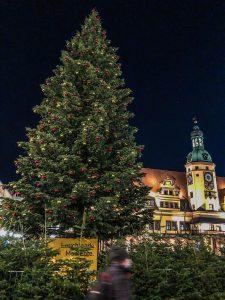 Leipziger Weihnachtsbaum
